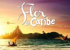 Flor do Caribe