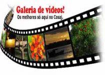 Galeria-de-Videos